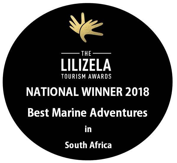 2018_lilizela_awards_2861198123.jpg