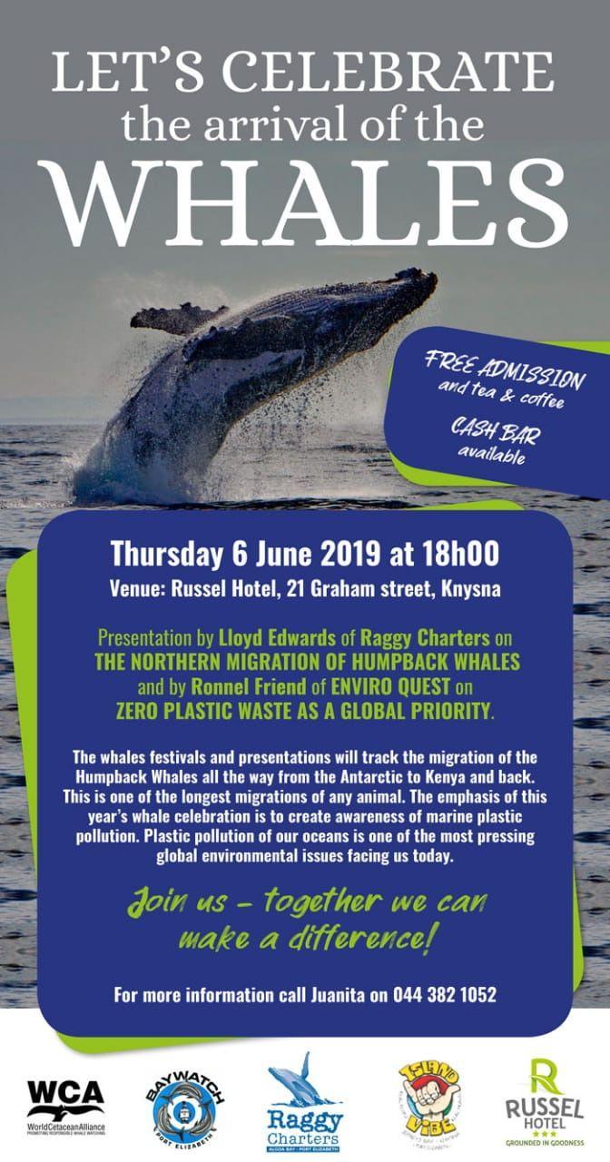 4_knysna_whale_poster.jpg