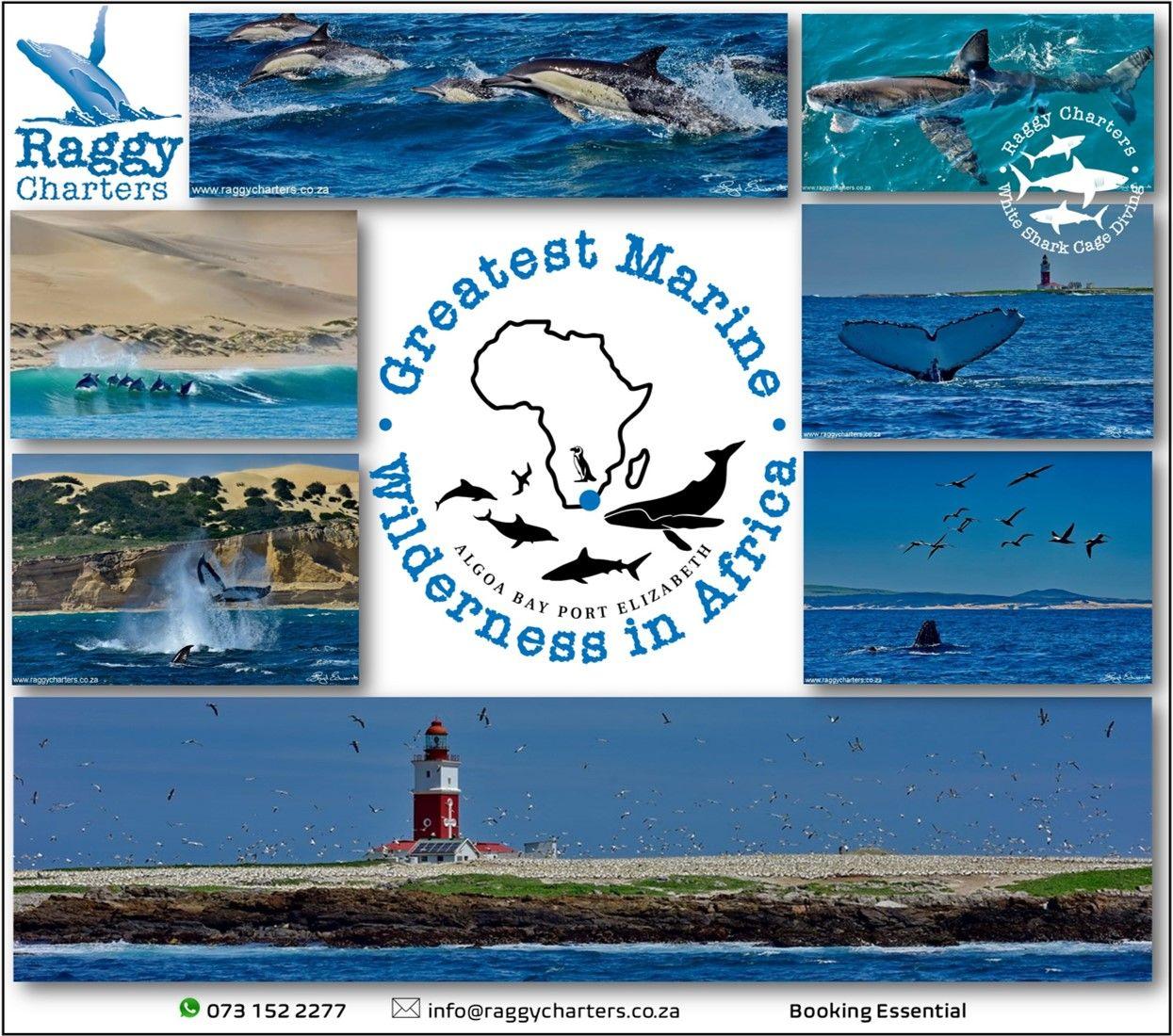 greatest_marine_wilderness_238811322.jpg