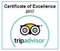 trip_advisor_2017.jpg