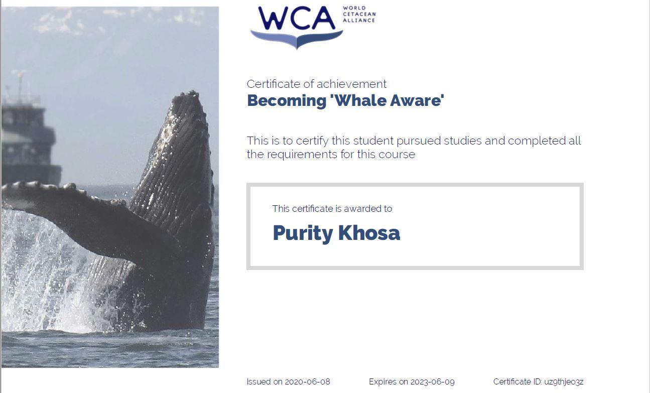 whale_aware_certificate_pk.jpg