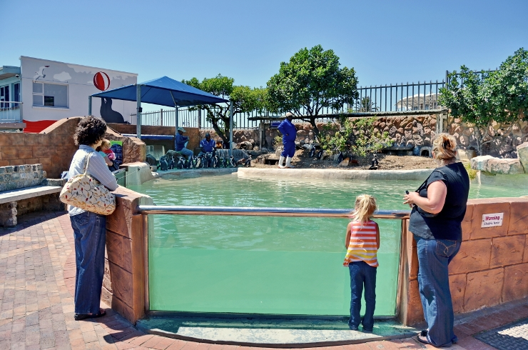 Guests at Bayworld with Penguins