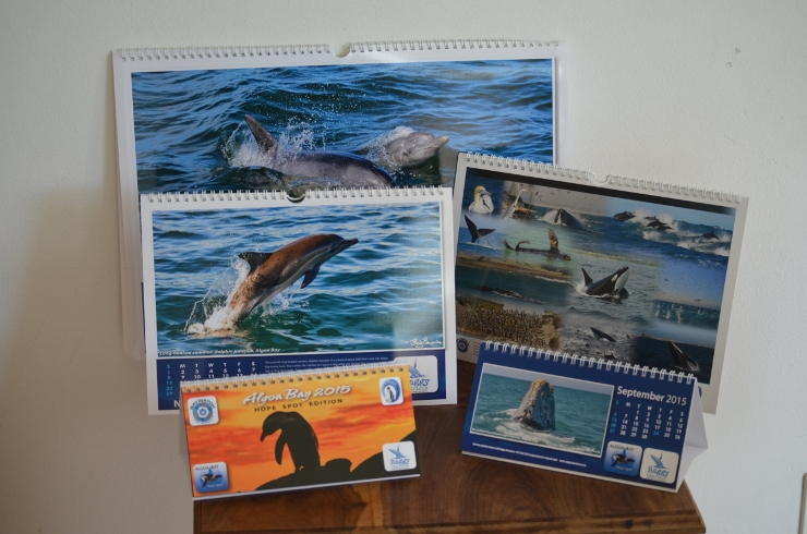 Algoa Bay 2015 Calendar Options