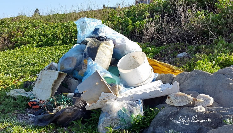 More Garbage Collected on International Coastal Clean-Up Day