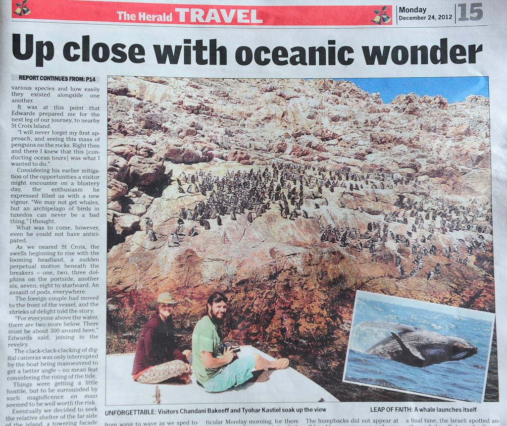 Two visitors to Port Elizabeth enjoyed a feast of spectacular whale watching with dolphins and penguins besides.