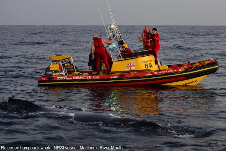 NSRI with humpback whale